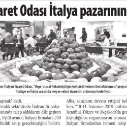 24.12.2018-İZMİR İTALYAN TİCARET ODASI İTALYA PAZARININ KAPILARINI AÇIYOR-ticaret gazetesi